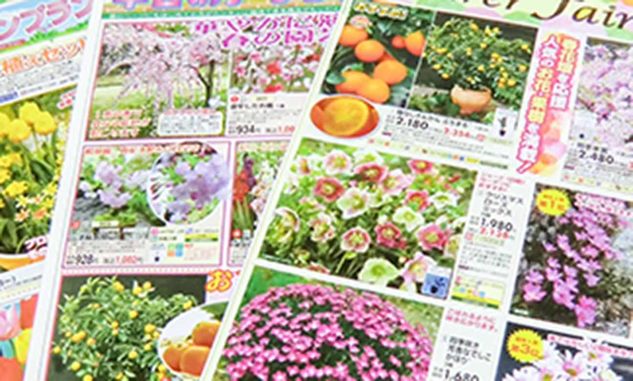 カタログ・チラシ事業(通販向け)