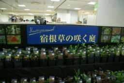 5月2日から開催されますNAGOYAガーデニングショウ2012に出展いたします。